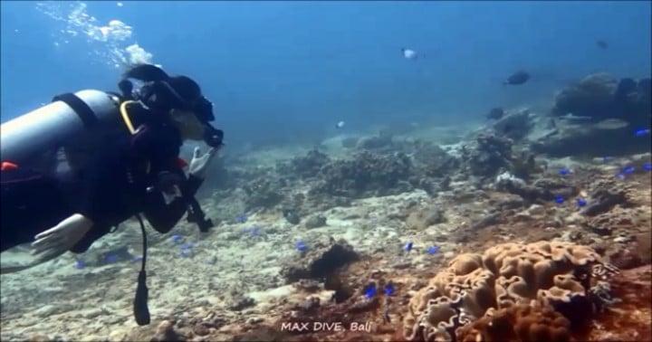 バリ島まさに20年ぶりのダイビング,超ブランクダイバー