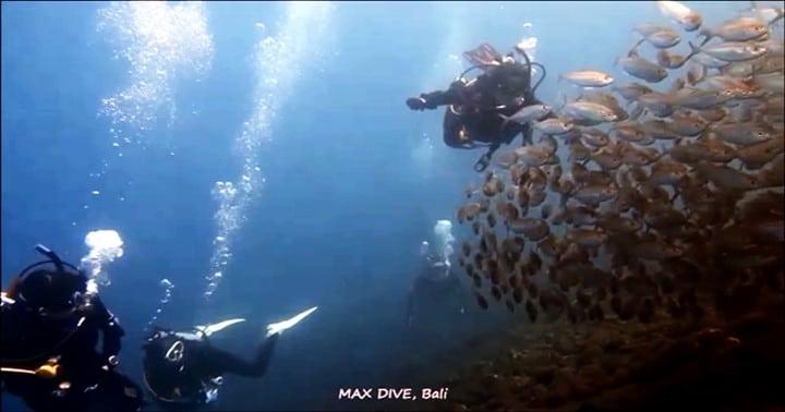 バリ島,年末は家族でダイビング