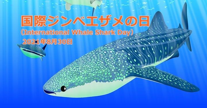 国際ジンベエザメの日,International whale shark day