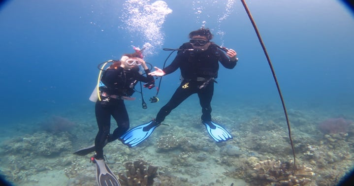 amed couple diving