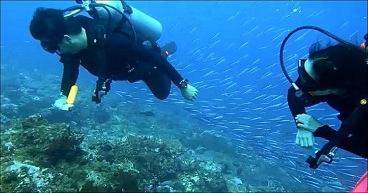 バリ島ヌサペニダでまったりドリフトダイブ