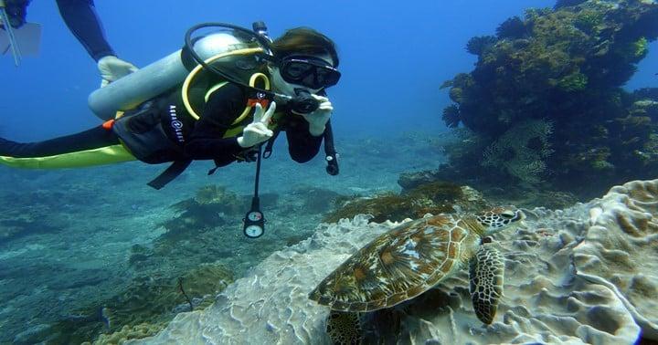 padang bai fun diving バリでウミガメとダイビング