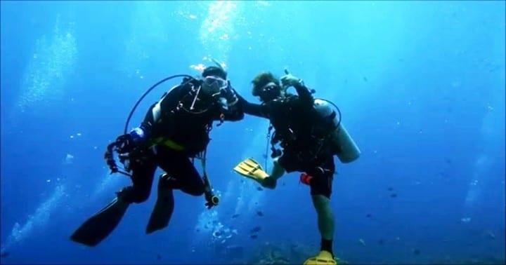 バリ島ダイビング,マンボウ