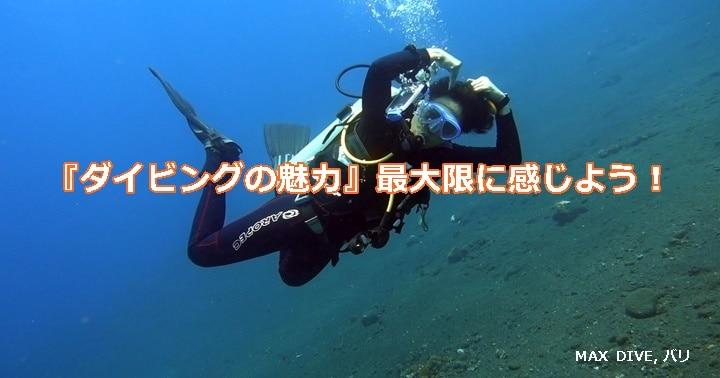 ダイビングの魅力,バリ島ダイビング
