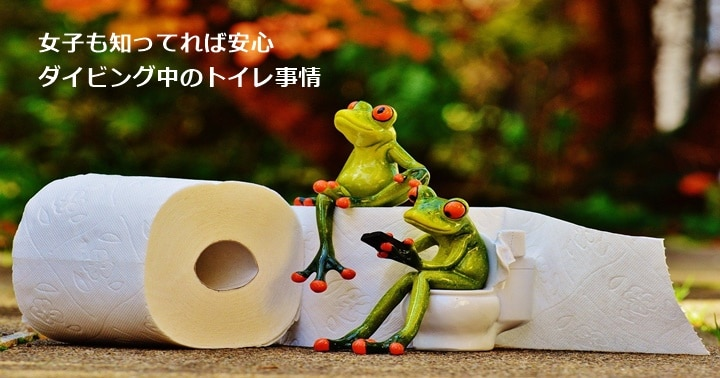 バリ島ダイビング,トイレ事情