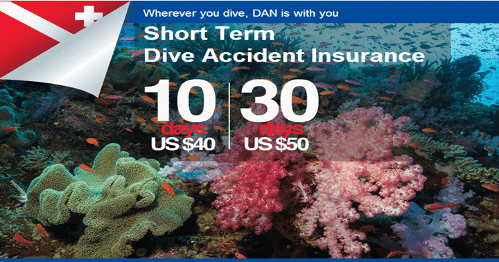 dan short term insurance