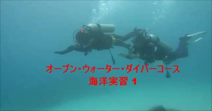 バリ島ダイビング:ダイビングライセンス取得