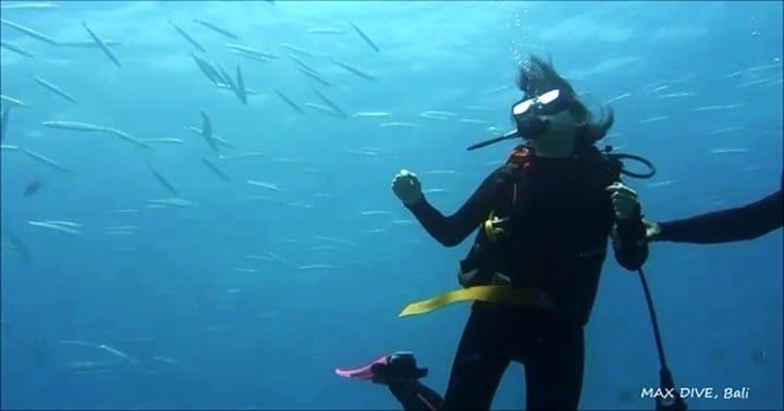 バリ島パダンバイで体験ダイビング