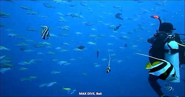 バリ島ヌサペニダのクリスタルベイでダイビング