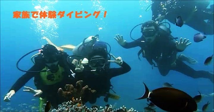 バリ島家族みんなで体験ダイビング
